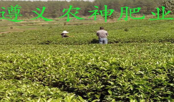 贵州有机肥网站