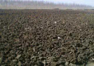 贵州鸡粪有机肥公司