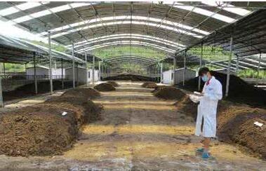 贵州油枯有机肥厂家哪家好