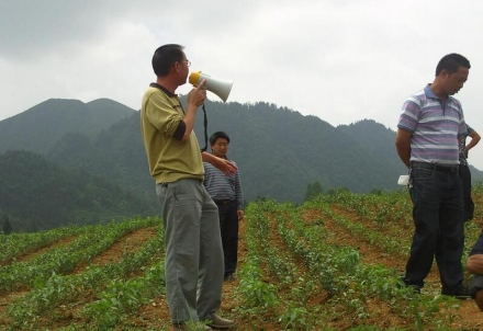 贵州有机肥含量